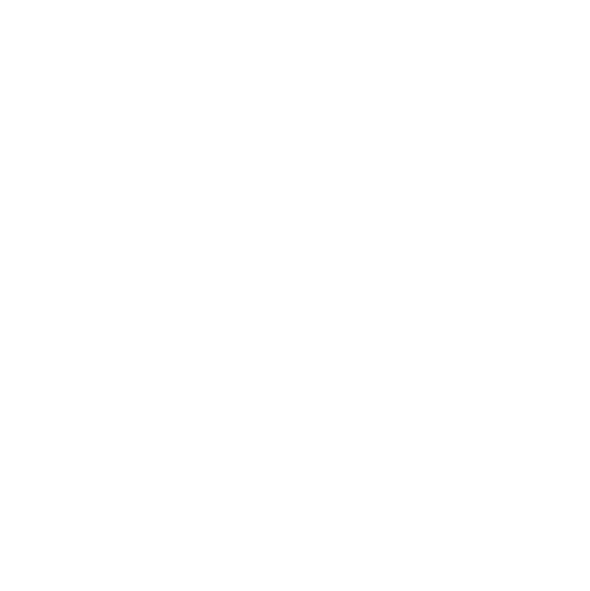 Logo Instagram Speed Motors Mérignac